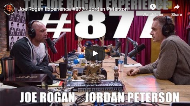 Joe Rogan and Jordan Peterson discuss pronouns sand the state of education